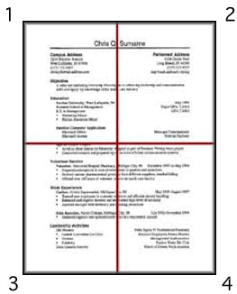 This Image Shows A Resume Split Into Four Equal Parts
